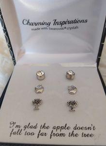 Charming Inspirations Earrings